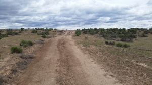 Small hills are much more challenging on dirt roads.